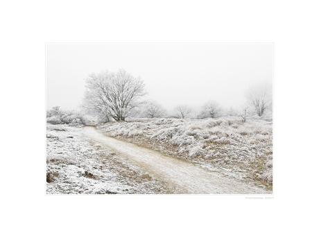 A Hazy Winter Wonderland - VIII