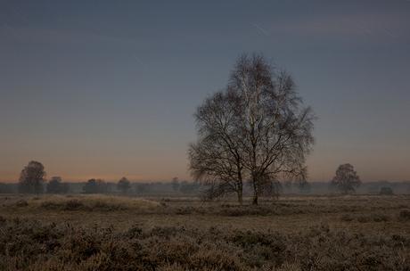 strange winternight sky