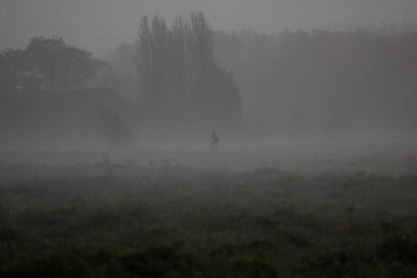Eenzaam in de mist.
