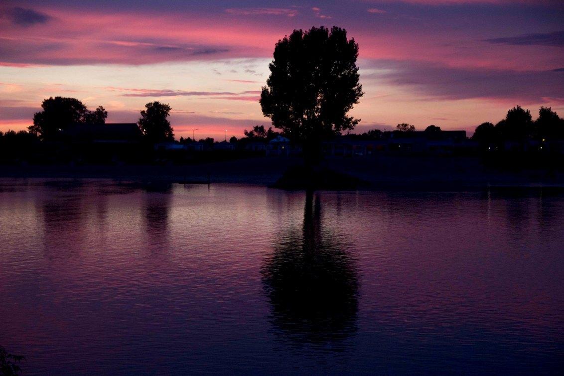 weerspiegeling - Weerspiegeling van een boom in het water van de Lek tijdens de zonsondergang. - foto door diana79 op 14-02-2014 - deze foto bevat: boom, water, waterkant, zonsondergang, landschap, weerspiegeling, spiegelbeeld