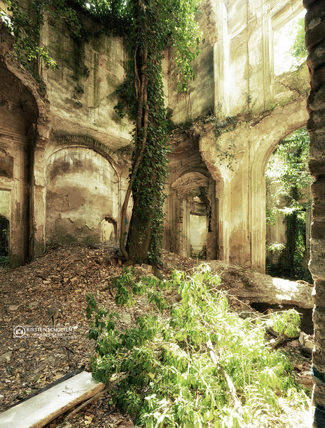 Overgrown Romantica