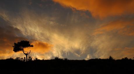 Zonsondergang bij de Arjensduin 1