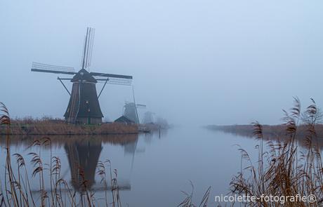 Misty Kinderdijk