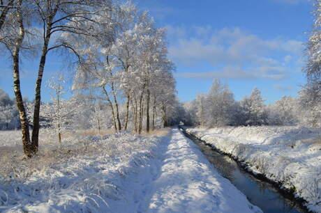 Winter Wonderland!