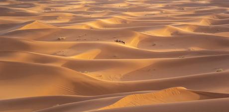 Lijnenspel in de woestijn