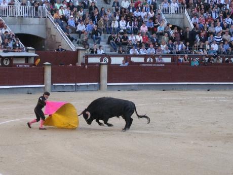El Toro (2)