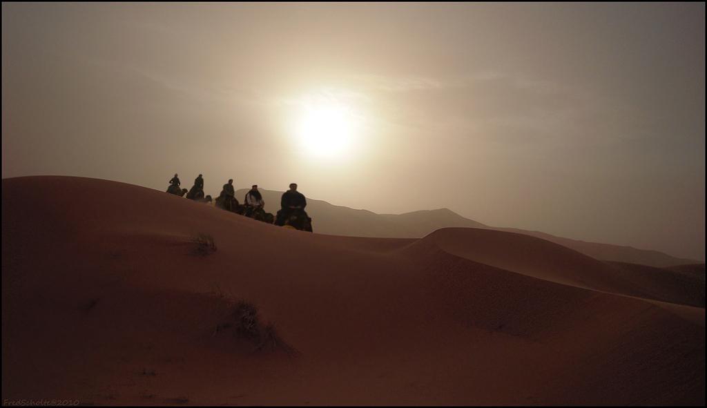 Coproductie - Een knappe montage van 'henkvanm13' met gebruikmaking van enkele van mijn Sahara-opnames.  Resultaat: de foto die ik had willen maken.  Bedankt H - foto door fredscholte op 11-01-2011 - deze foto bevat: zand, marokko, kamelen, sahara, fredscholte, henkvanm13