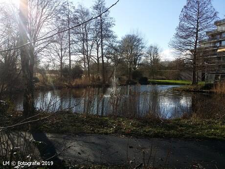 Natuur in Capelle aan den IJssel.