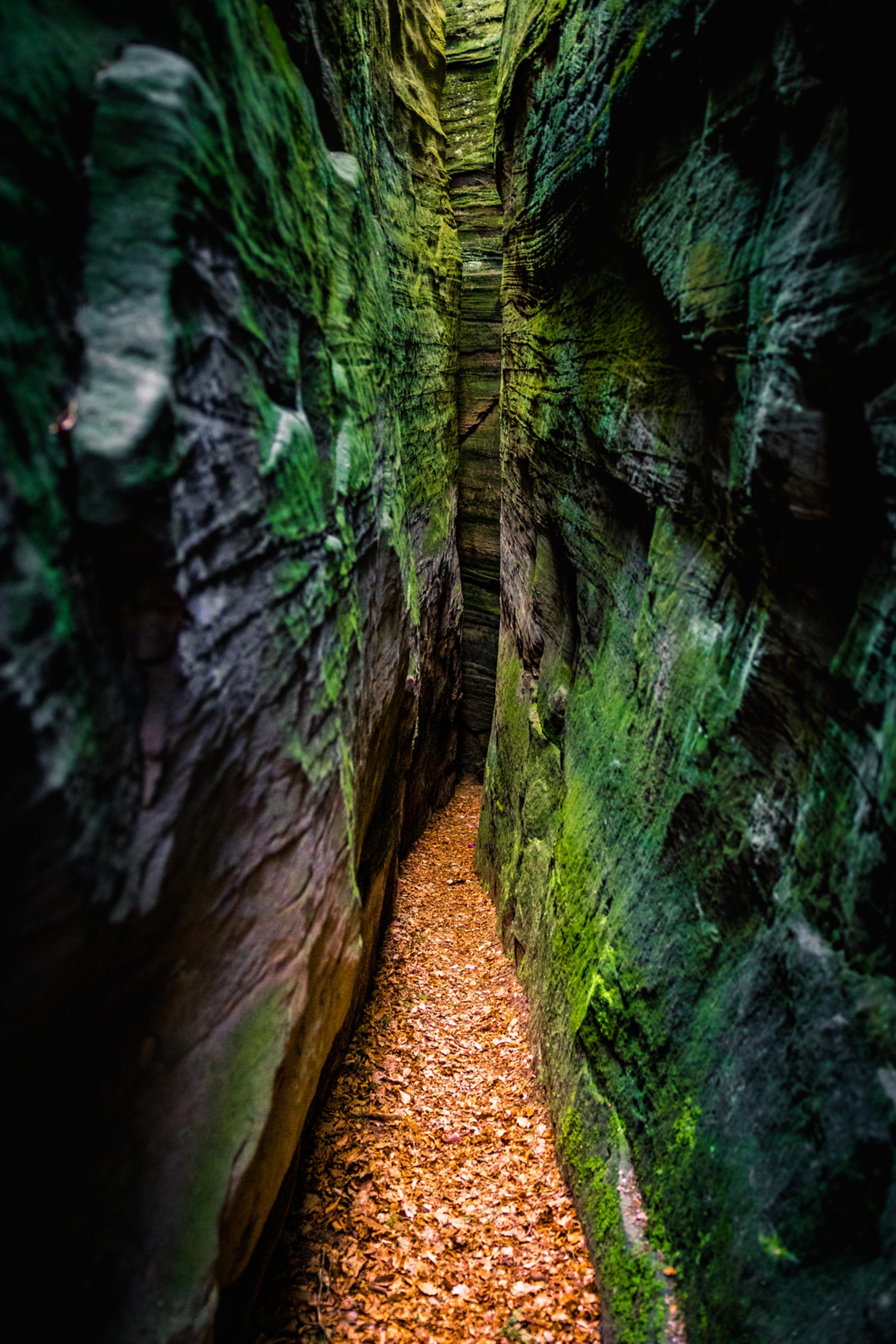 Gorge-ous - Een van de zeven kloven in het 'sept gorges' complex nabij het plaatsje Berdorf in Luxemburg. Sommige van deze kloven zijn slechts 30cm breed en je k - foto door Sake-van-Pelt op 24-04-2017 - deze foto bevat: groen, bladeren, lente, natuur, klein, geel, licht, herfst, vakantie, landschap, pad, voorjaar, bergen, zwitserland, luxemburg, small, gorge, kloof, blaadjes, gorges, kloven, zeven, krap, claustrofobie, berdorf, Klein Zwitserland, claustrophobic, claustrofobisch, sept gorges