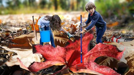 Herfst, veel werk voor de twins