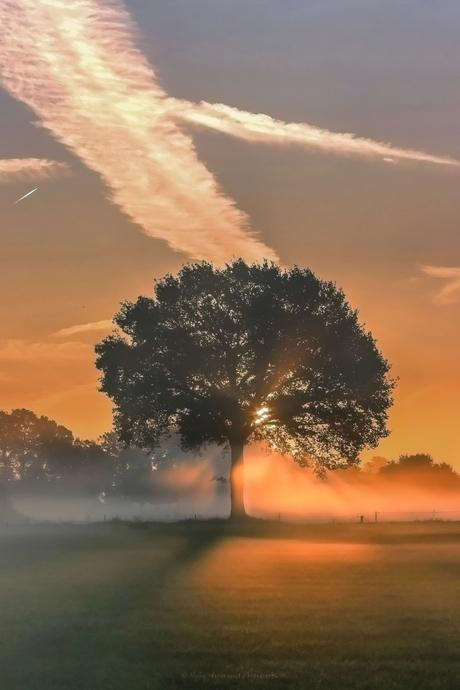 Goodmorning......