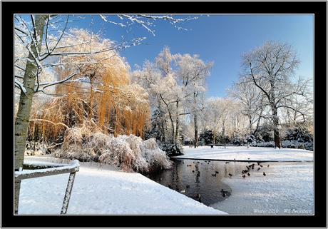 park in wintersfeer