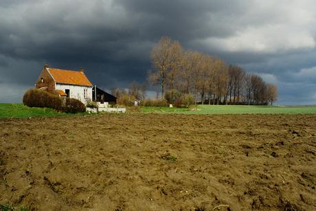 poldergrond