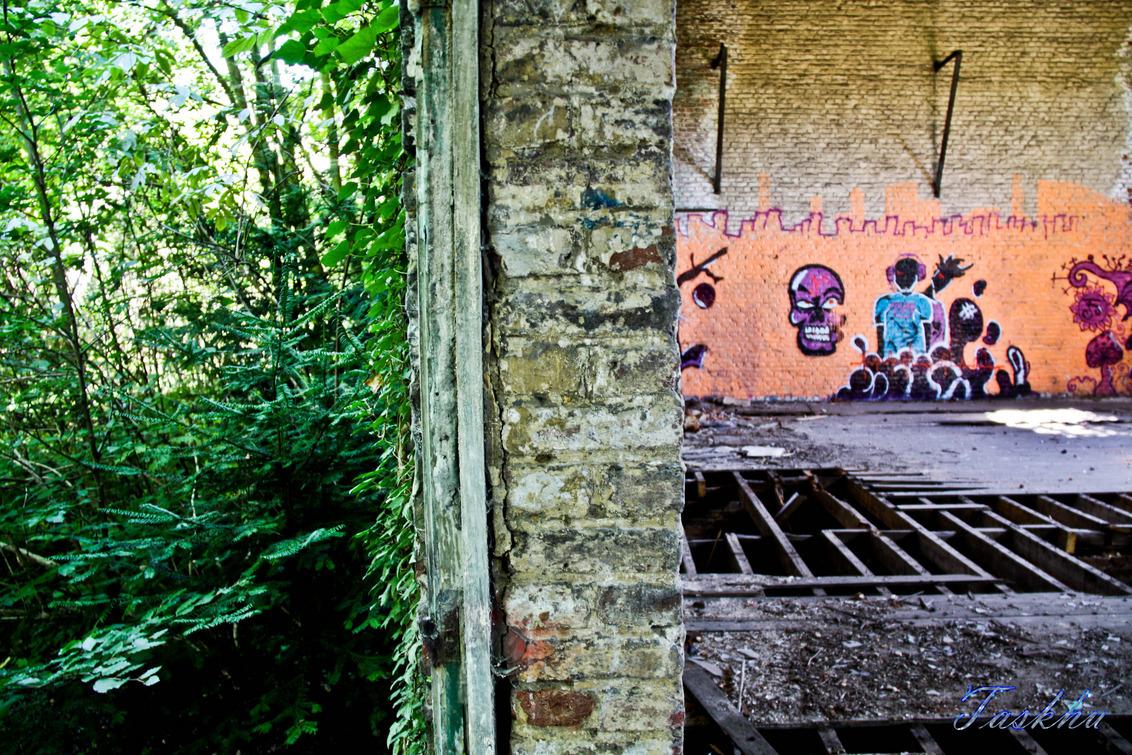 ford de la chartreuse - half binnen half buiten - foto door taskhu03 op 19-08-2013