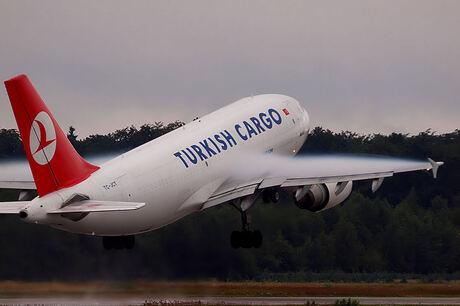 turkisch cargo