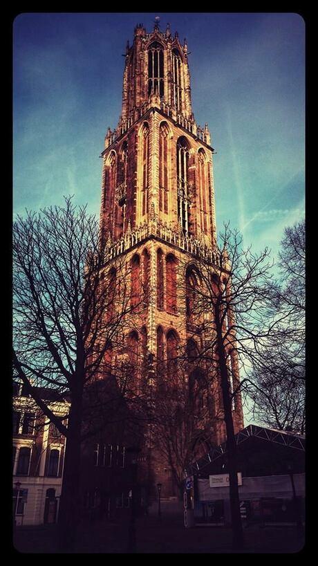 De Domtoren in Utrecht in de zon