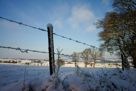 winterlandschap in limburg