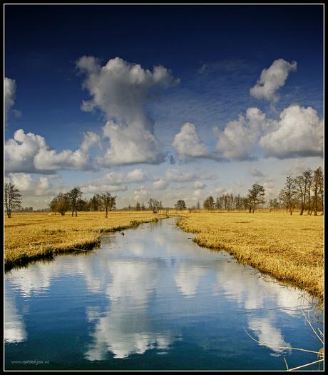 Rietvelden bij Wanneperveen