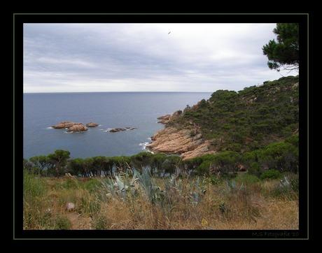 Hier aan de kust, de spaanse kust