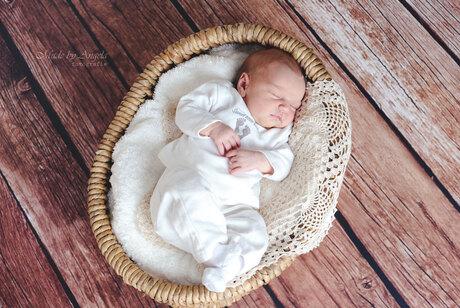 Sleeping in a basket