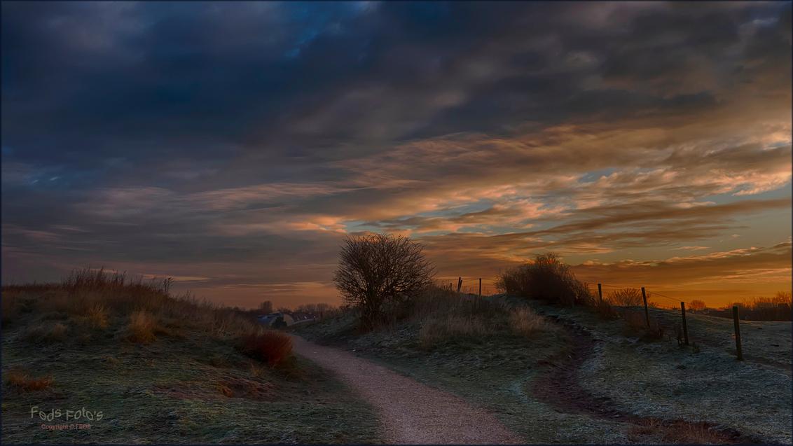 Katwijkse Duinen - Katwijkse Duinen in de ochtend - foto door Jan Zuijderduijn op 06-02-2016 - deze foto bevat: landschap, duinen, zonsopkomst