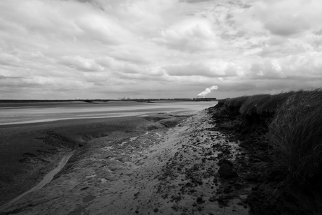 Zeeland - Verdronken land van Saeftinghe