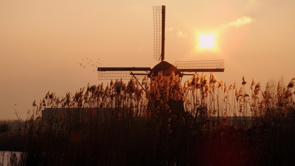 """Molen - Afgelopen dinsdag tijdens een """"ommetje"""". Het was koud maar mooi! - foto door mariah1982 op 17-02-2010 - deze foto bevat: molen"""