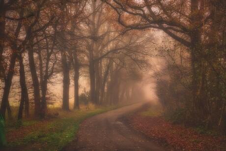 Mist in Twente