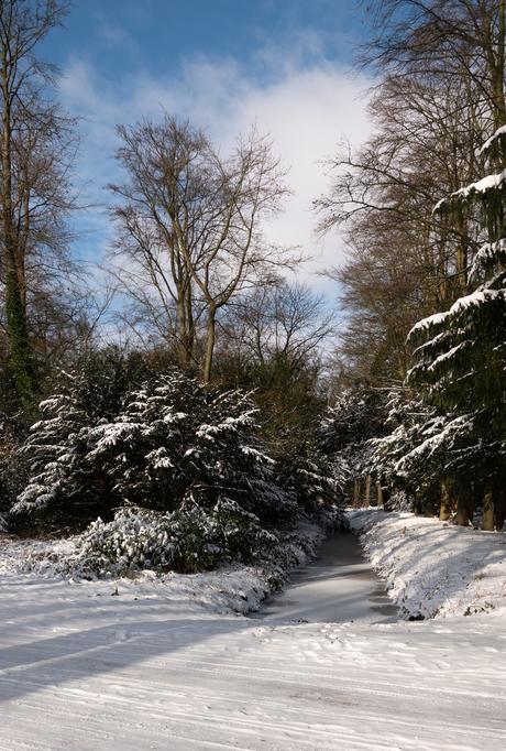Winter landschap 13