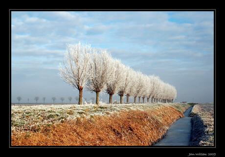 Winterwereld - 2