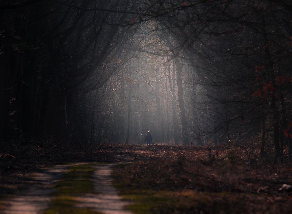 20210227-IMG_6573 - Met lightroom geprobeerd om een donkere tunnel richting het licht te creëren. Met een eenzame wandelaar op de achtergrond. - foto door wag-hendrikx1 op 01-03-2021