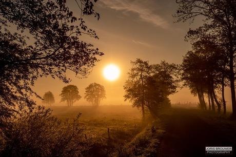 Drenthe vroeg in de ochtend