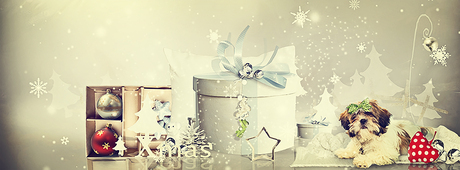 Merry Xmas ...