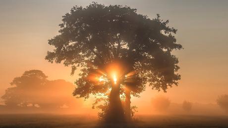 Mooie zonsopkomst in Zenderen