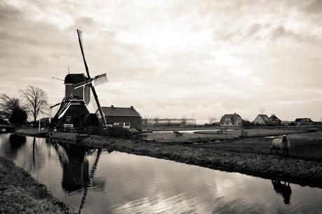 Typisch Nederlands!