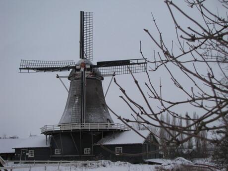 Bolwerksmolen Deventer