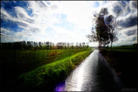 'Biesbosch'