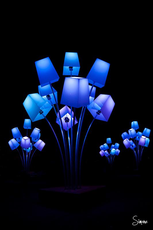 Glow - Glow Eindhoven - foto door frostwood op 17-11-2012 - deze foto bevat: glow