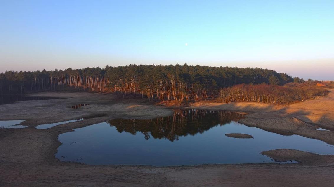 Zonsopgang in het bos - Deze foto heb ik genomen tijdens de zonsopgang in een natuurgebied. Het was een klein beetje nevelig wat zorgde voor een hele mooie zonsopgang. - foto door MatthijsGeuze op 02-03-2021 - deze foto bevat: lucht, water, natuur, spiegeling, landschap, mist, duinen, bos, zonsopkomst, bomen, zand, meer, maan, kust
