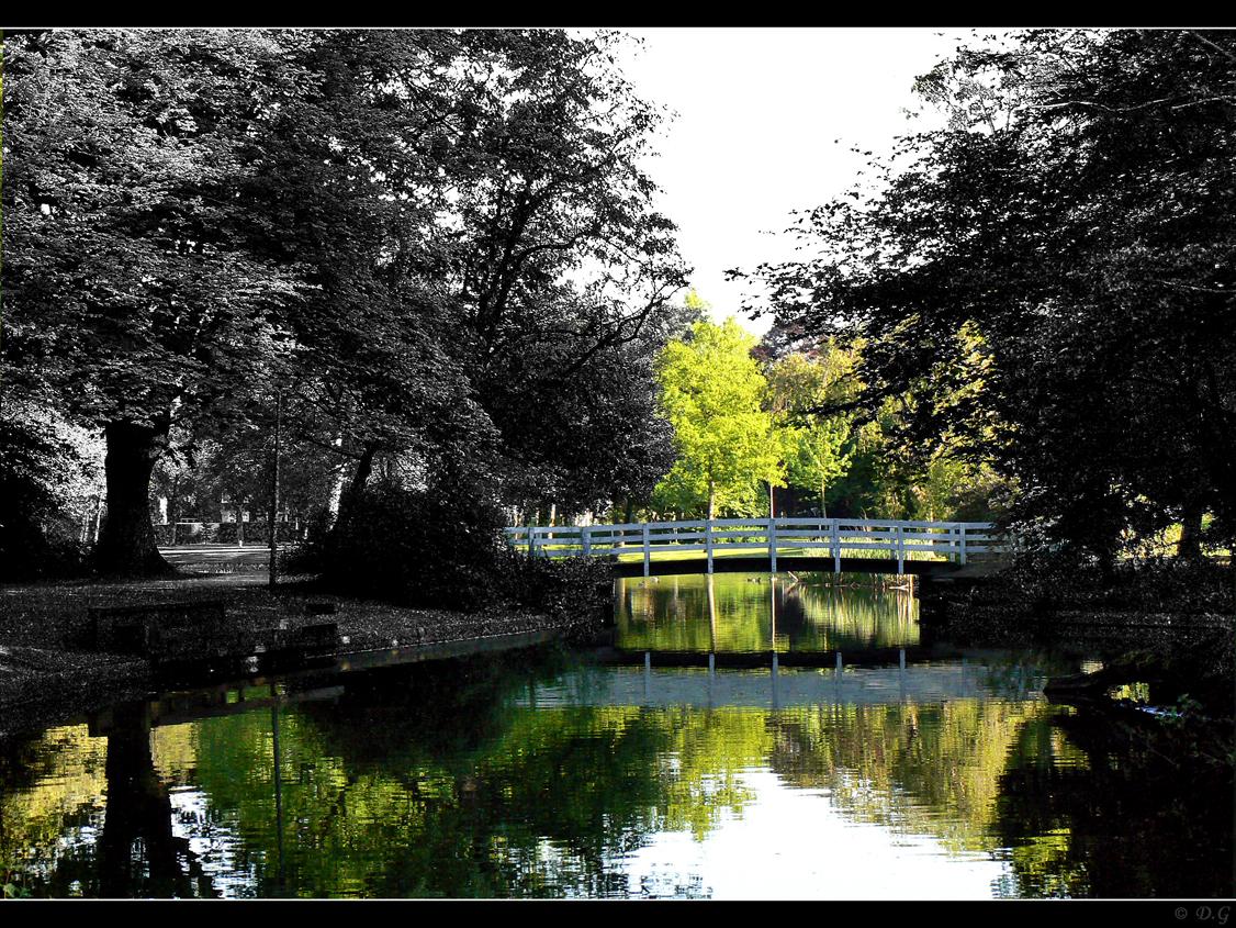 Coloured Bridge - Een dagje aan het plaatjes schieten geweest in het Wilhelminapark te Meppel.  Na wat klooien met photoshop kwam ik op dit idee.  Ben er zelf wel  - foto door daniel44 op 17-05-2008 - deze foto bevat: kleur, zon, water, natuur, park, brug, zwartwit, contrast, meppel, daniel44, wilhelminapark