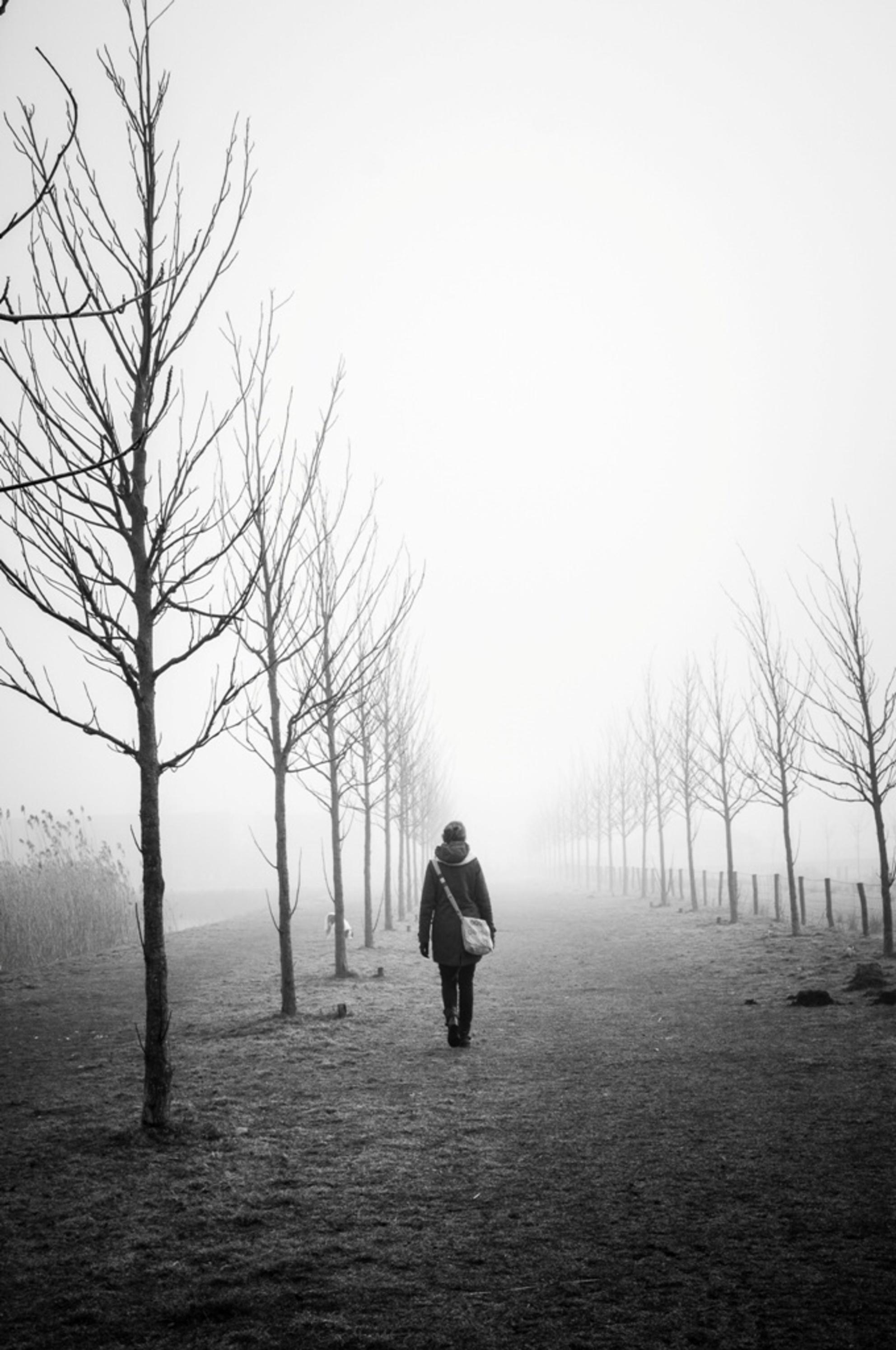 image - - - foto door Samoe op 28-02-2015 - deze foto bevat: donker, licht, mist, verlaten, zwart wit - Deze foto mag gebruikt worden in een Zoom.nl publicatie