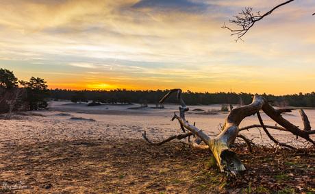 Zandverstuiving zonsopgang