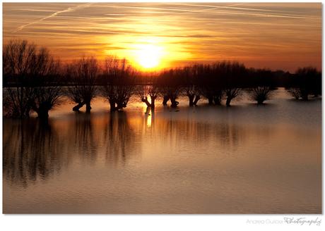 High Water Sunset