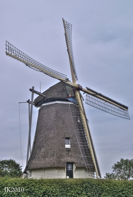 Welkom in Holland