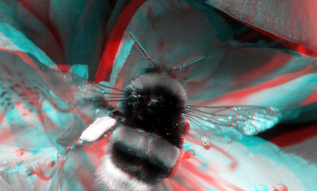 Bee Lumix Modified H-FT012 3D stereo