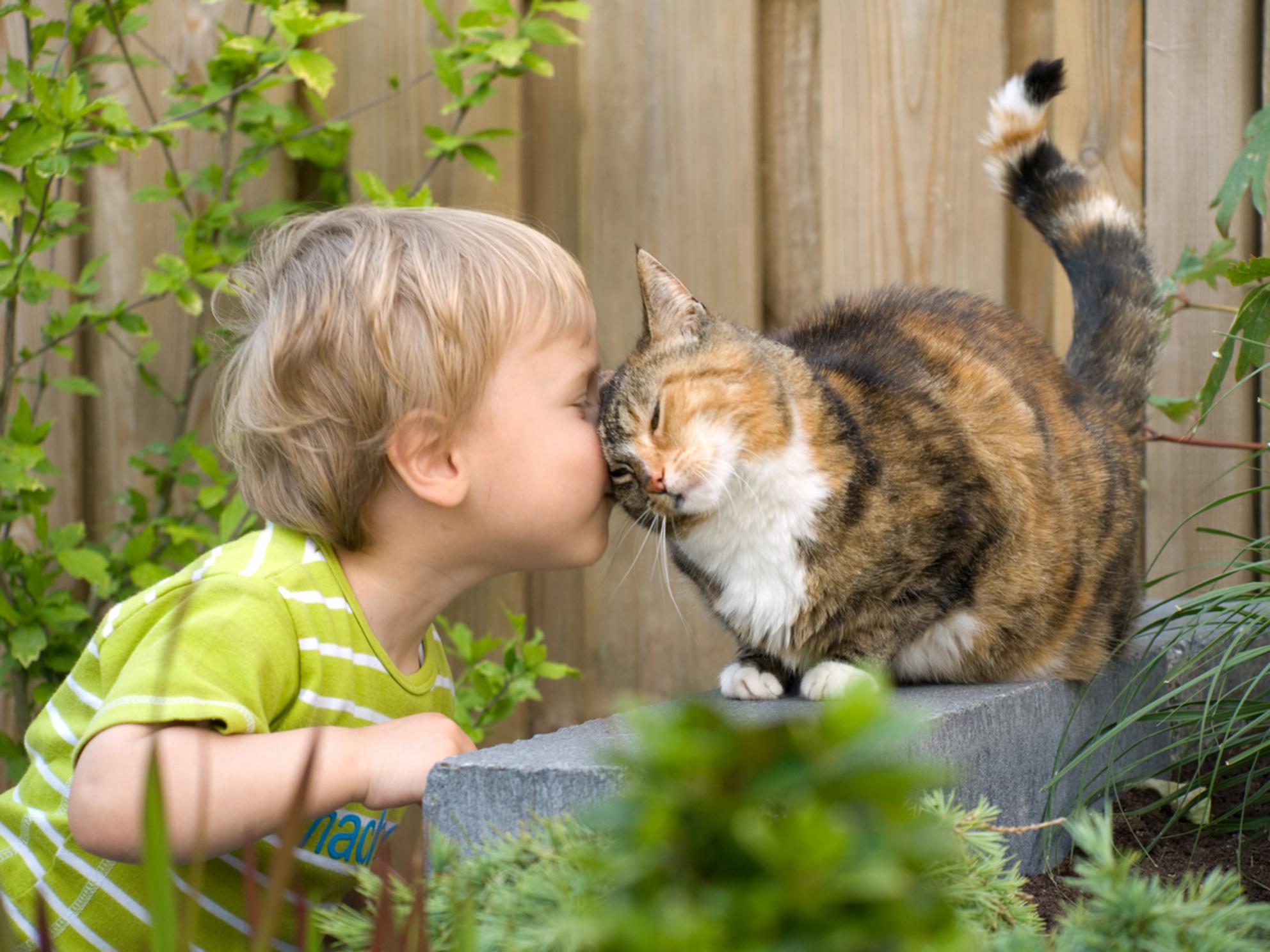 Onvoorwaardelijke Vriendschap - Mijn jongste zoon was de hele dag al lief aan het spelen met de kat (chica). Toen hij hem een kusje wilde geven, dacht Chica en ik geef hem maar een - foto door vasco1973 op 02-06-2009 - deze foto bevat: kat, kinderen, vriendschap