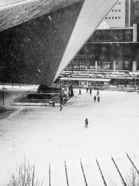 Eerste sneeuw van 2019