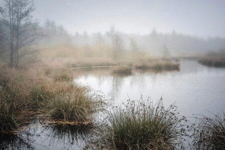 Veenmeer - Deze foto gemaakt in het mooie witteveen in Buurse, pal aan de grens met Duitsland. - foto door aardbol op 08-02-2017 - deze foto bevat: herfst, mist, veen