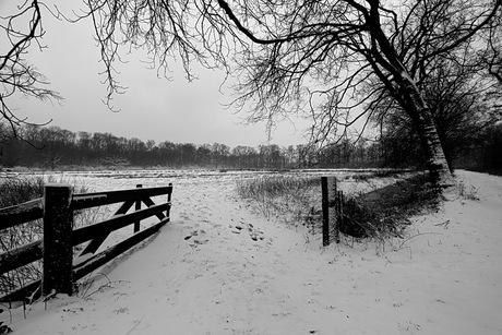 eindelijk weer eens winter