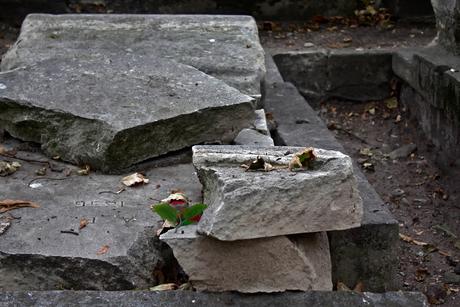 Begraafplaats van Montmartre 16